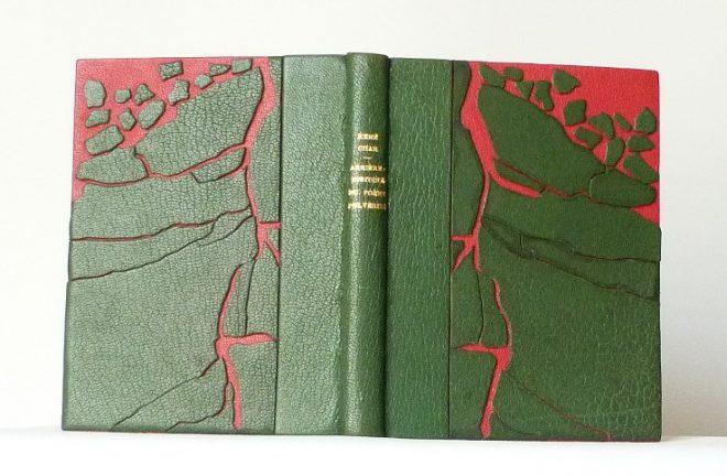 Arrière-histoire du Poème pulvérisé, demi-cuir vert, décor représentant la débacle de la banquise en vert sur un fond rouge.