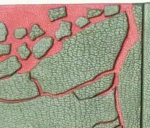 Demi-cuir vert, décor représentant la débacle de la banquise en vert sur un fond rouge.