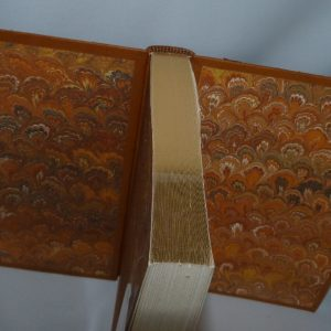Tête or. Plein cuir beige clair, mosaîques cernées beige foncé, collage d'oiseaux d'Escher avec opposition des beiges.