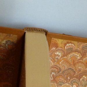 Tranchefile chapiteau bicolore. Plein cuir beige clair, mosaîques cernées beige foncé, collage d'oiseaux d'Escher avec opposition des beiges.