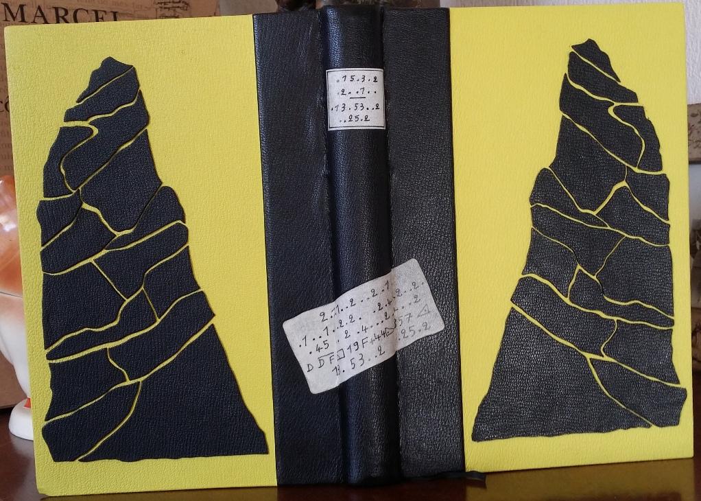 Reliure cuir jaune et noire - couverture