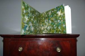 -reliure-art_Alphonse-Allais_Album-Primo-Avrilesque_plein-cuir-vert2