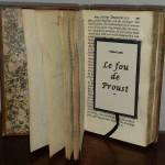 Le fou de Proust de Patrice Louis