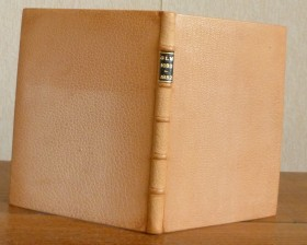 Plein-cuir beige clair