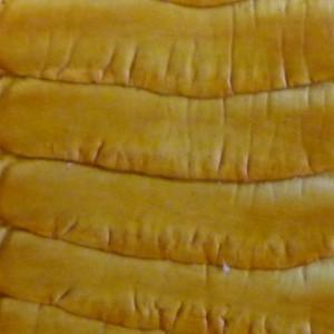 Plein cuir jaune avec mosaïques de cuir jaune d'antérieur de patte d'autruche