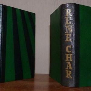Demi cuir vert foncé, alternance de bandes trapezoidales vertes claires et vertes foncées. Plats, gardes,chemise et étui en cuir. Tête or.