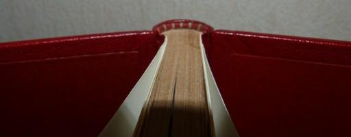 Tome 1, demi-cuir rouge à encadrements, décor découpée dans une dalle de vinyle grise, tranchefile cuir bicolore rouge et grise,charnière cuir, étui triple.