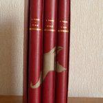 L'ile mystérieuse de Jules Verne - 4/4