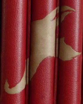 Mosaïque de cuir gris sur les dos des 3 tomes reliés en cuir rouge