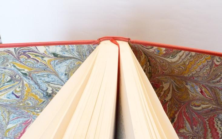 Demi-cuir-rouge à encadrement. Dans le cadre antérieur pavage d'oiseaux multicolores d'Escher, dans le plat postérieur, pièce de cuir bleu foncé avec incrustations de quelques oiseaux déEscher.