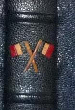 Drapeaux Français entre 2 nerfs. Plein cuir bleu de cet ouvrage patriotique, titre, mosaïque, tranchefile et gardes tricolores (bleu-blanc-rouge)