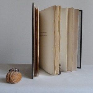 Demi-cuir-noir, fleurons dorés, titre à la chinoise, gardes en soie (moire). Vision des grandes marges.