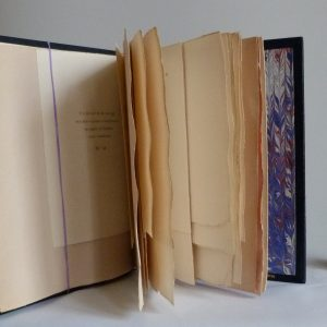 Détails des très grandes marges. Plein cuir bleu de cet ouvrage patriotique, titre, mosaïque, tranchefile et gardes tricolores (bleu-blanc-rouge)