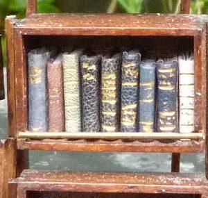 Mini-livres bleus. Mini-bibliothèque en balsa sur pilotis. Chaque élement regroupe des livres de même nature, en général : couleur.