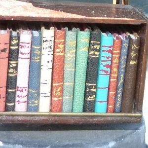 Mini-livresvariés. Mini-bibliothèque en balsa sur pilotis. Chaque élement regroupe des livres de même nature, en général : couleur.