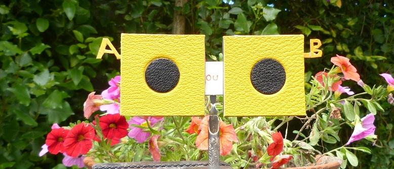 Les deux résultatsLes deux options pour obtenir les ballons pour le décor de la reliure.
