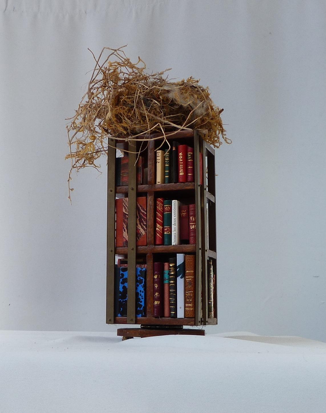 Deuxième face de la bibliothèque.