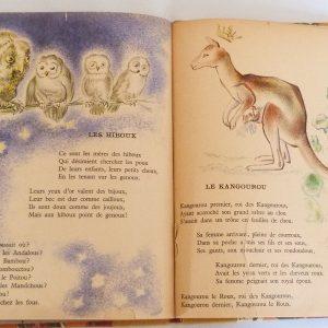 Trente chantefables de Robert Desnos : Les hiboux et le kangourou