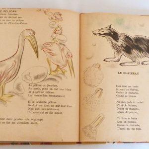 Trente chantefables de Robert Desnos : Le pélican et le blaireau
