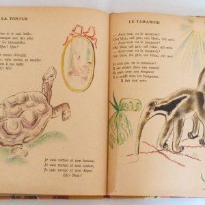 Trente chantefables de Robert Desnos : La tortue et le tamanoir
