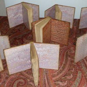 Photos des 10 tomes des cahiers rouges, plats ouverts sur des gardes de papier cuve, main.
