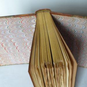 Tête or d'un des 10 cahiers rouges.