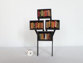 Mini-bibliothèque contenant 39 livres avec un dé au sol.