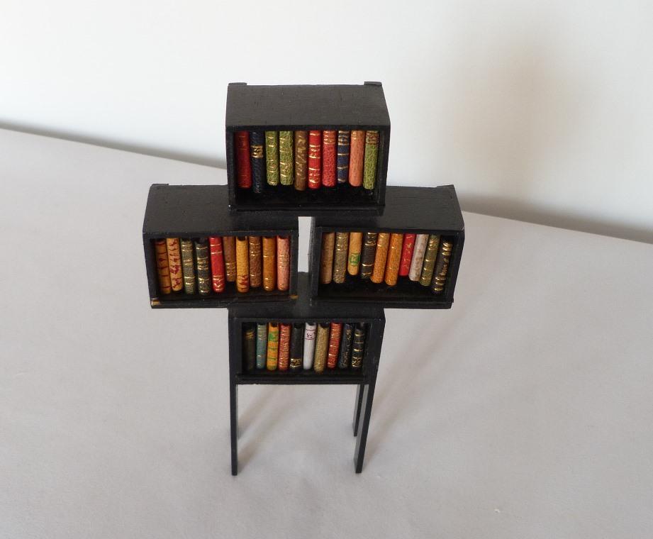 Mini-bibliothèque contenant 39 livres vue légerement du dessus