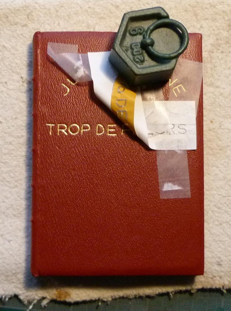 "3trop de fleurs, marquage de ""trop de""."