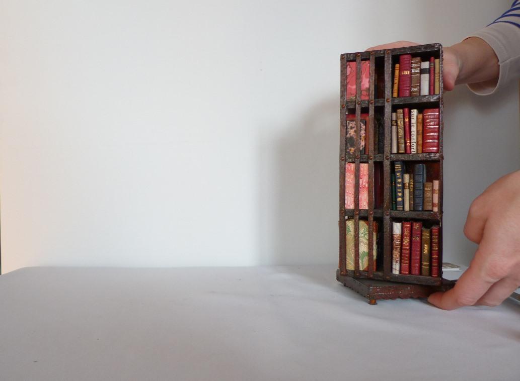 mini bibliotheque pivotante mini livre tiny livre chute. Black Bedroom Furniture Sets. Home Design Ideas