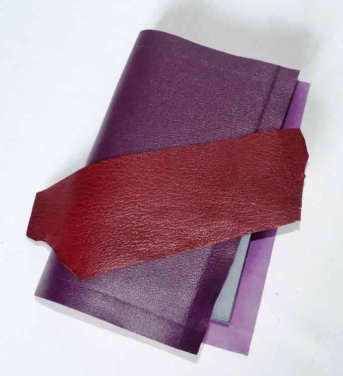 Devoirs de vacances à faire en Bretagne, plein cuir violet et rose