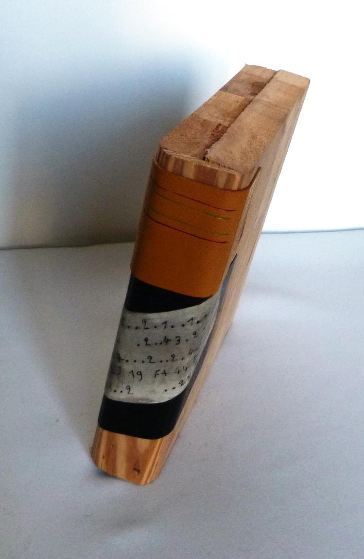 rayonnage contenant des manuels et un faux dos