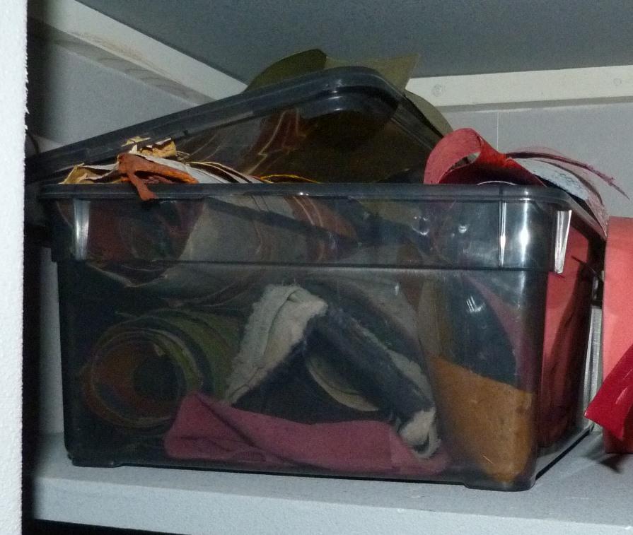 penderie : recension de mon matériel de reliure, peaux de poisson