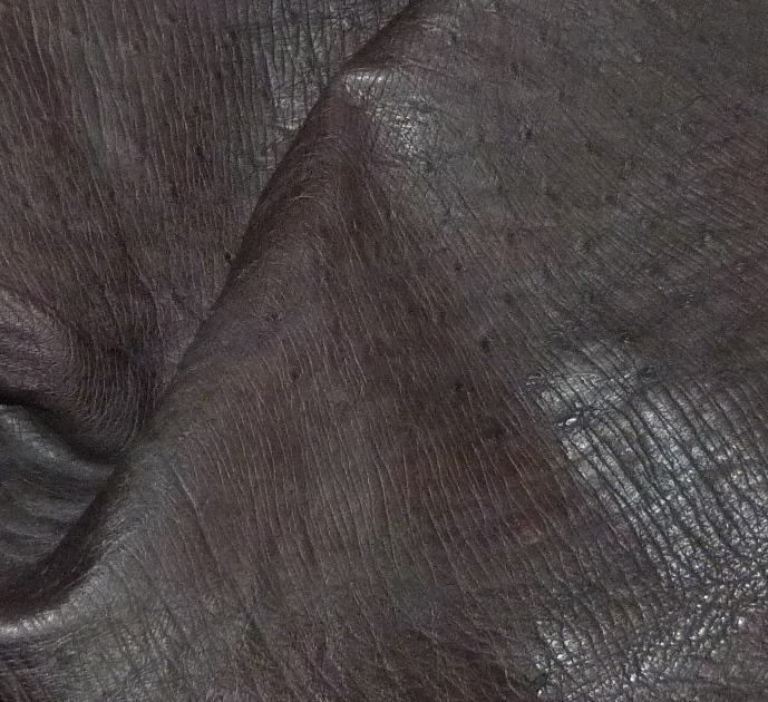 Contenu du placard bleu : peau d'autruche.