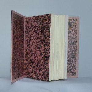 L'acacia de Claude Simon : gardes de couleur
