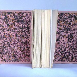 L'acacia de Claude Simon : gardes couleurs