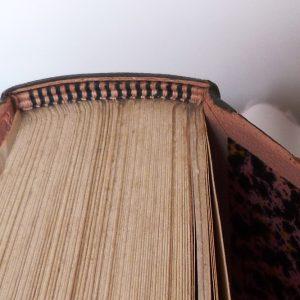 l'acacia de Claude Simon : la tranchefile chapiteau rose et noire