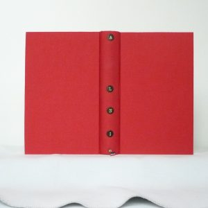Histoire de la révolution française : tome 10.