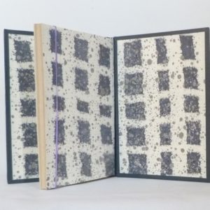Au mont ventoux : gardes en papier marbré de Alberto Valese