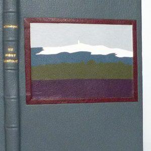 Au mont Ventoux : mosaïque plat de devant