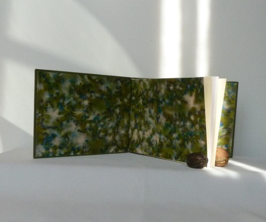 album primo-avrilesque : gardes avec rayons de soleil