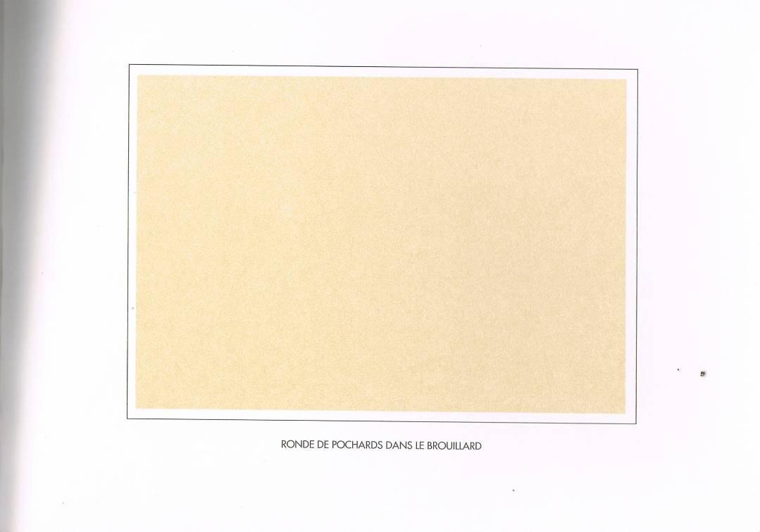 album primo-avrilesque :gris