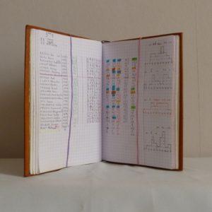 Carnets de notes (2007-2008), mon contenu