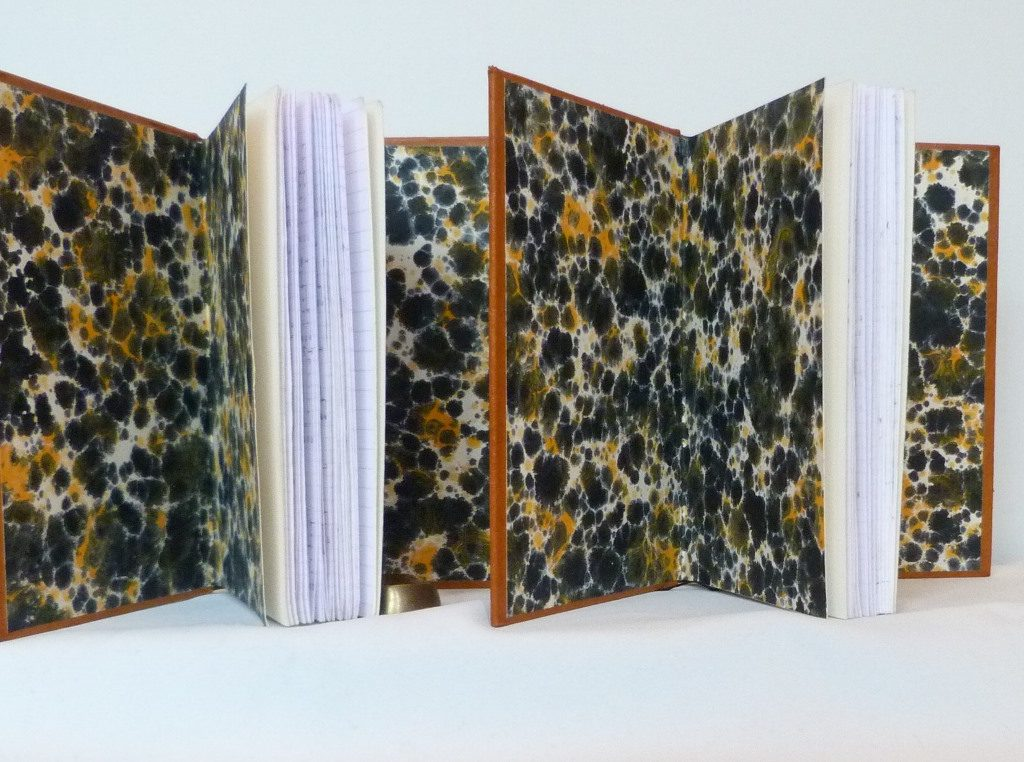 Carnets de notes (2007-2008), gardes couleur