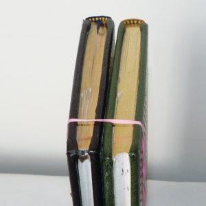 Carnets de notes (1993-1994) : tête or.