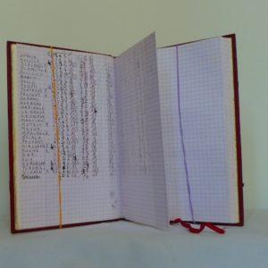 Carnets de notes (1999-2000), utilisation