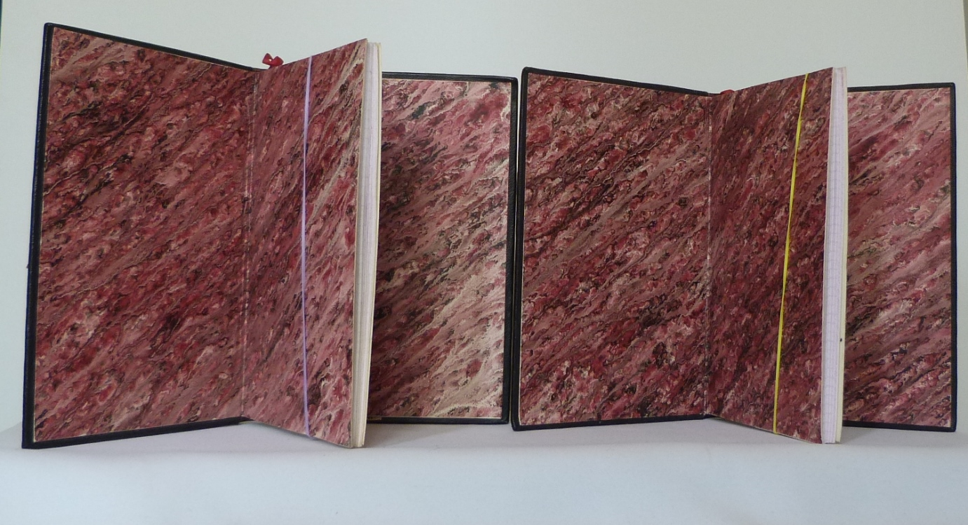 Carnets de notes (2001-2002), gardes couleur.