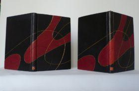 Carnets de notes (2001-2002), les deux carnets