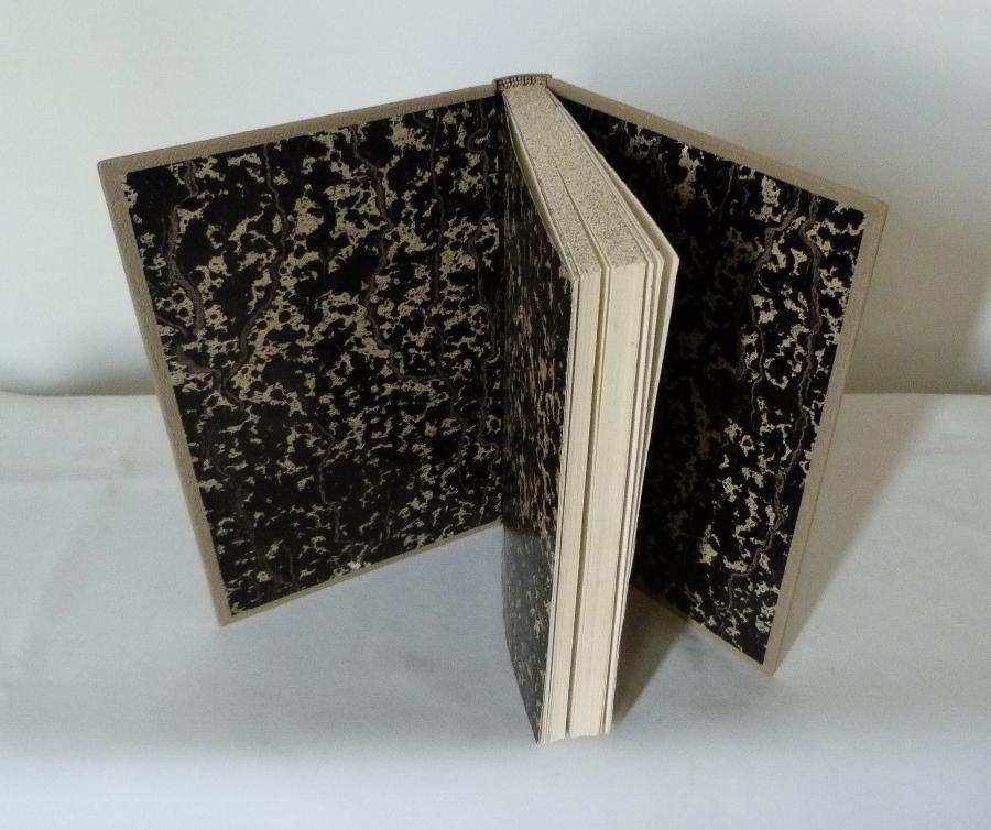 Blanc comme neige, gardes en papier marbré noir et blanc.