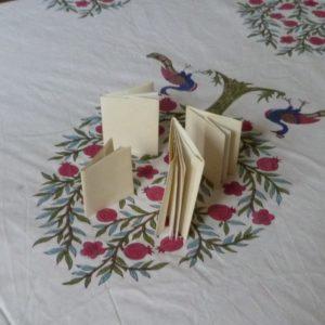 corrections des devoirs de vacances, petits carnets